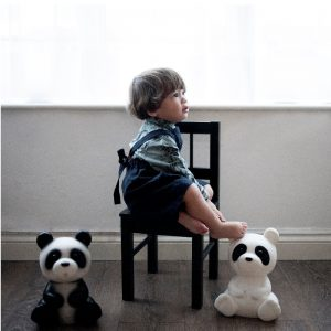 heico_panda